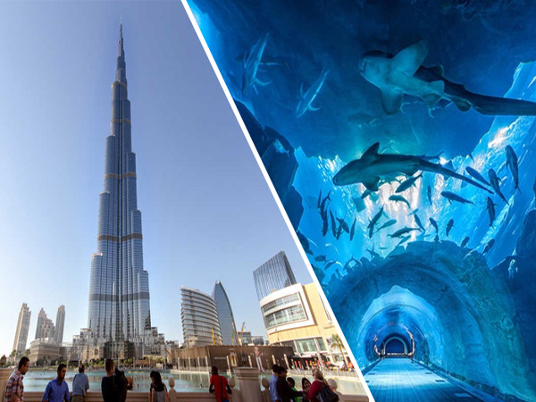 combo-burj-khalifa-aquarium-city-tour